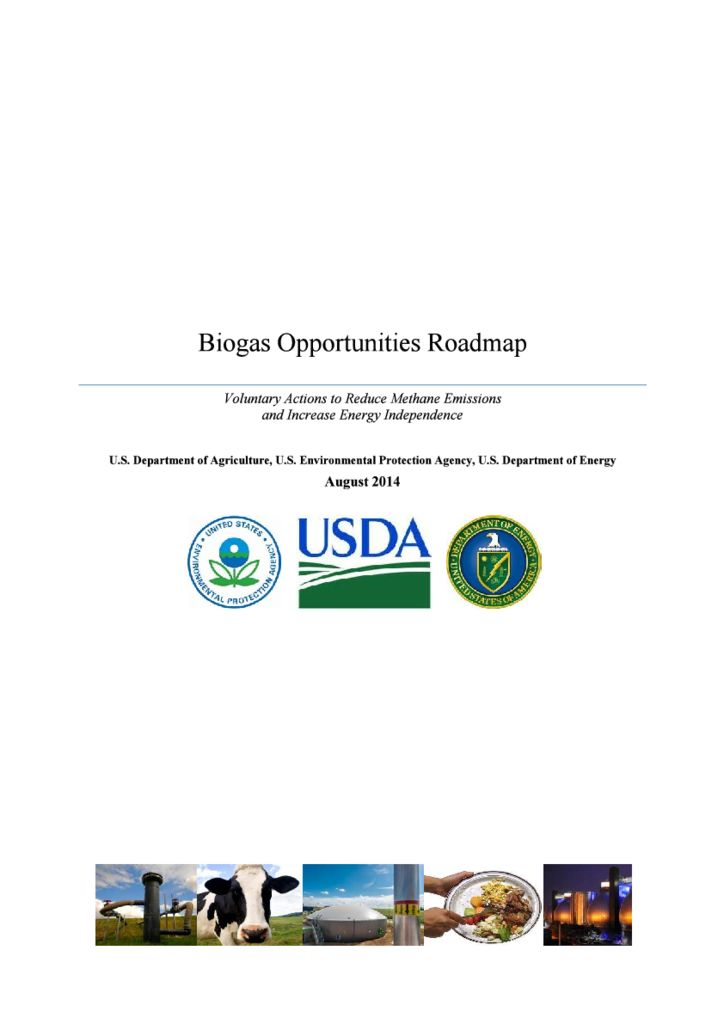 thumbnail of Biogas-Roadmap
