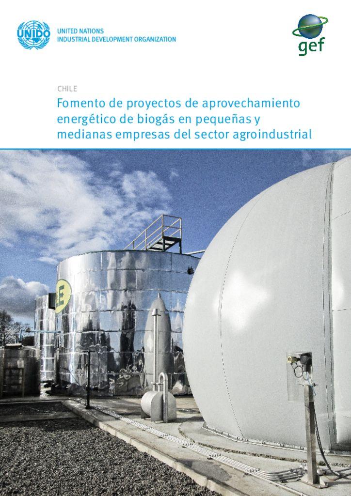 thumbnail of Informativo proyecto GEF