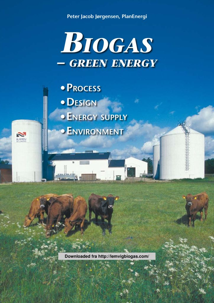 thumbnail of Biogas Green Energy (process- design- energy suply – environment)