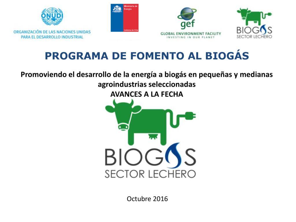 1-Programa-GEF-Biogás-e-iniciativas-en-Los-Ríos-y-Los-Lagos-Gira-de-prospección-de-tecnologías-México-y-Costa-Rica-pdf